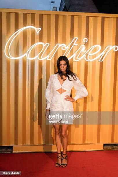 Madeline Madden attends the Cartier Precious Garage Party on November 29 2018 in Sydney Australia