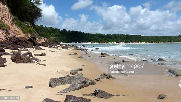 Madero´s beach coast