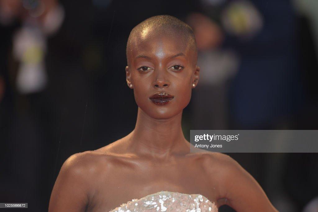 A Star Is Born Red Carpet Arrivals - 75th Venice Film Festival : Fotografía de noticias