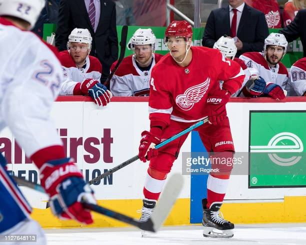 Madison Bowey of the Detroit Red Wings follows the play from in front of the bench of the Montreal Canadiens in his first game as a Wing during an...