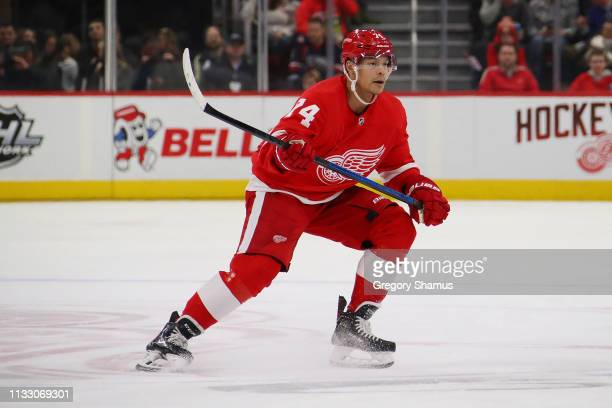 Madison Bowey of the Detroit Red Wings skates against the Montreal Canadiens at Little Caesars Arena on February 26 2019 in Detroit Michigan