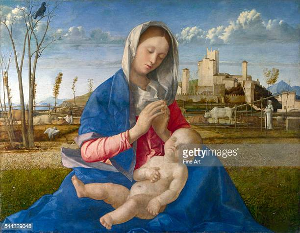 Madonna of the Meadow 1505 oil on canvas private collection