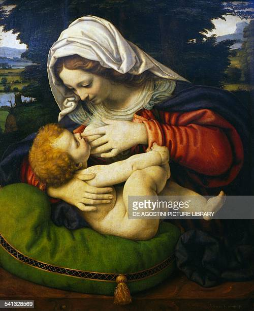 Madonna with Green Cushion by Andrea Solario oil on wood Italy 15th century Paris Musée Du Louvre