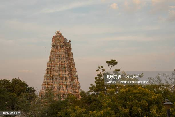 Madurai, Looking across Vegetation to one of the Temples