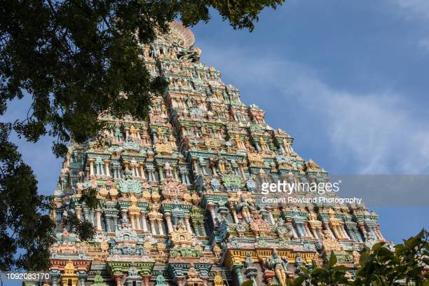 Madurai, Temple framed by Trees