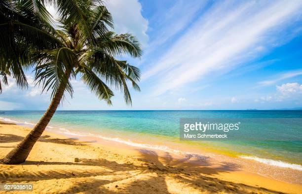 Mae Nam Beach, Ko Samui, Chang Wat Surat Thani, Thailand