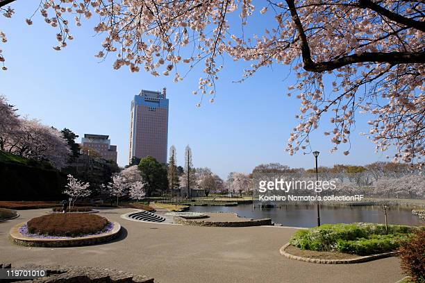 maebashi park - maebashi city stock photos and pictures