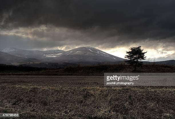 maemori mountain near sunset - 八幡平市 ストックフォトと画像