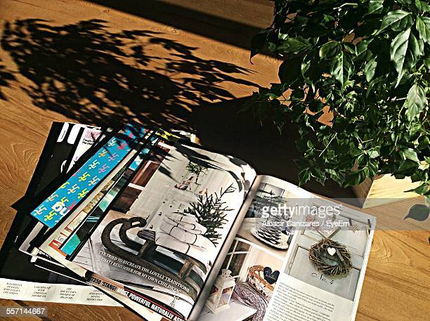 magazines and potted plant on table - printed media stock pictures, royalty-free photos & images
