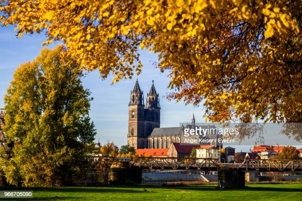 magdeburg cathedral in city during autumn - saxony anhalt stock pictures, royalty-free photos & images