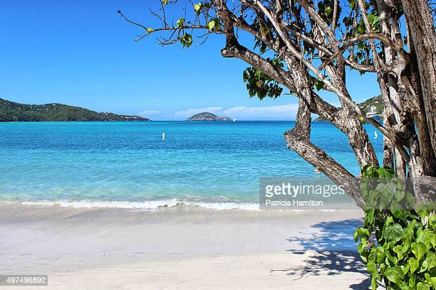 magens bay beach, st thomas - magens bay stock photos and pictures