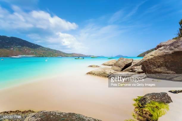 magens bay tropical beach with no people at saint thomas, us virgin islands - caribisch nederland stockfoto's en -beelden