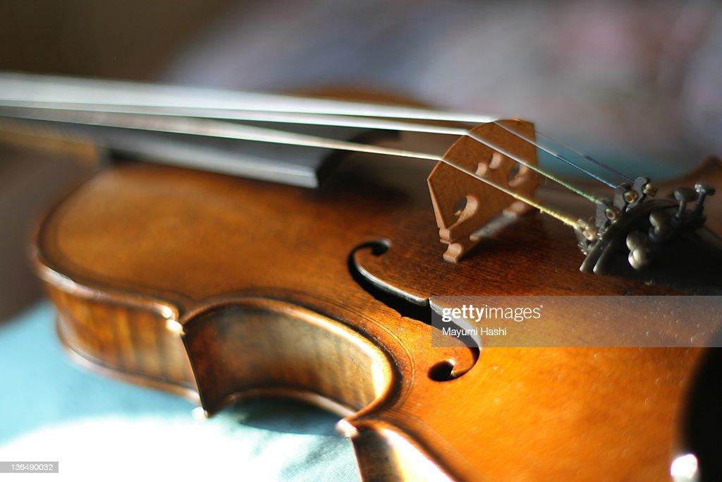 Maggini's violin with beautiful sound : Stock Photo