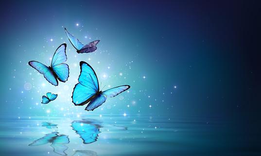 Magic Butterflies On Water 939332932