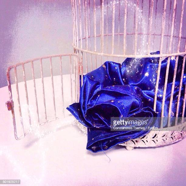 Magic cloth in bird cage