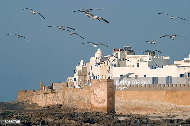 magic essaouira - agadir stock pictures, royalty-free photos & images