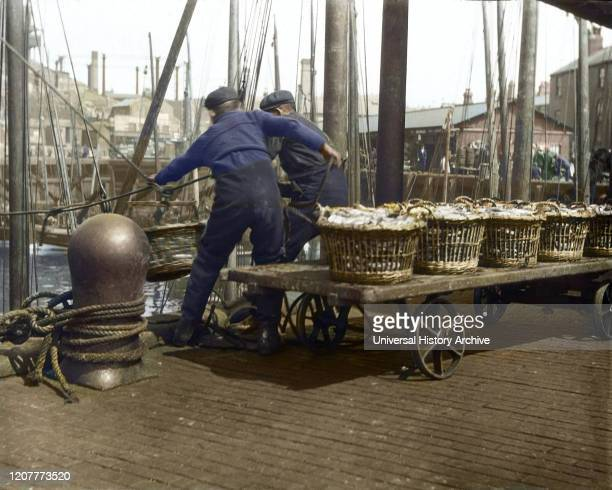 Magic lantern slide circa 1880, Victorian/Edwardian Social History. Two fishermen hauling herring fish off their boat at North Shields Fish Quay;...