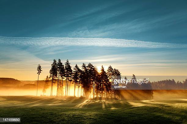 magic light on golf course - non urban scene stock pictures, royalty-free photos & images