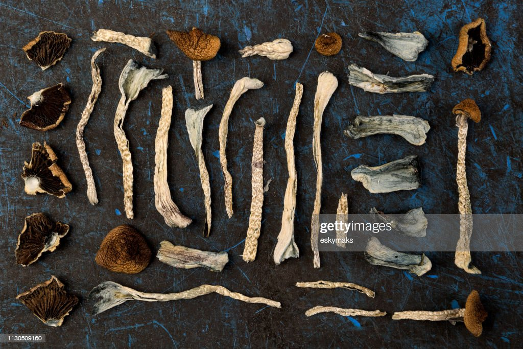 Magic mushrooms, top view. : Stock Photo