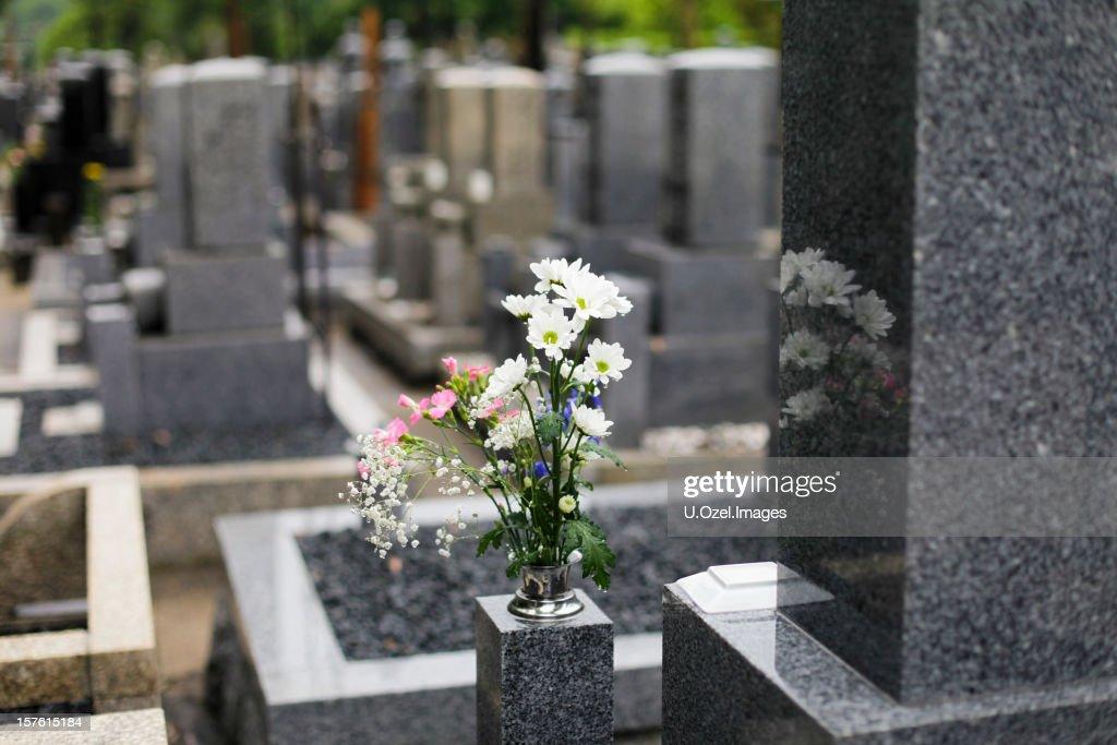 Magical Cemetery : Stock Photo