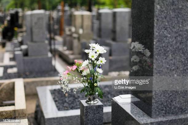 cementerio mágico - mausoleo fotografías e imágenes de stock