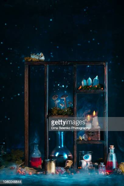 Magical equipment shelf or shadow case with crystals, burning candles, potion bottles, mushrooms, occult ingredients, and moss. Mystical still life on a dark background with copy space.