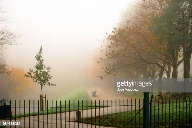 'magical mistery autumn' - mistery foto e immagini stock