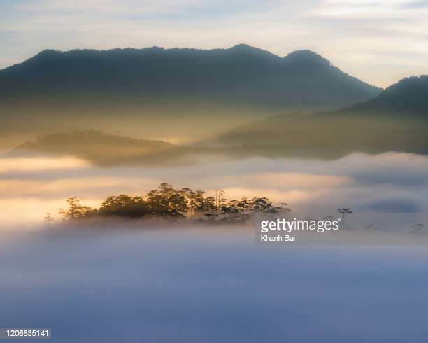 magical of the fog and sunlight on mountain peak at sunrise - atmospheric mood stock pictures, royalty-free photos & images