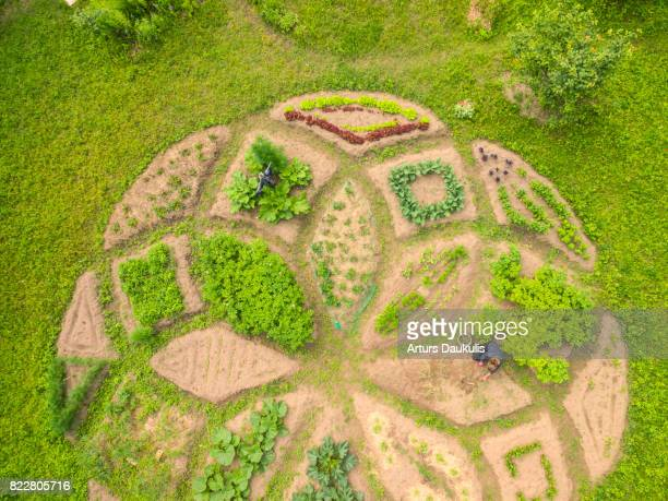 Magical shape allotment garden inside a city