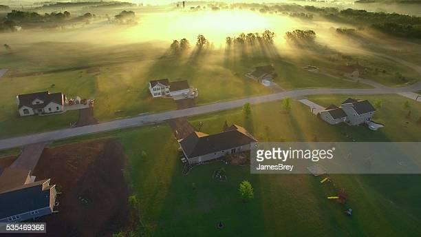 Magical sunrise through ground fog, trees casting long shadows