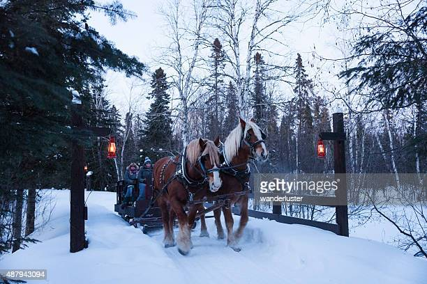 magical winter horse drawn sleigh in snow - christmas horse stock pictures, royalty-free photos & images