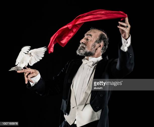 magician doing trick with doves - illusion stock pictures, royalty-free photos & images