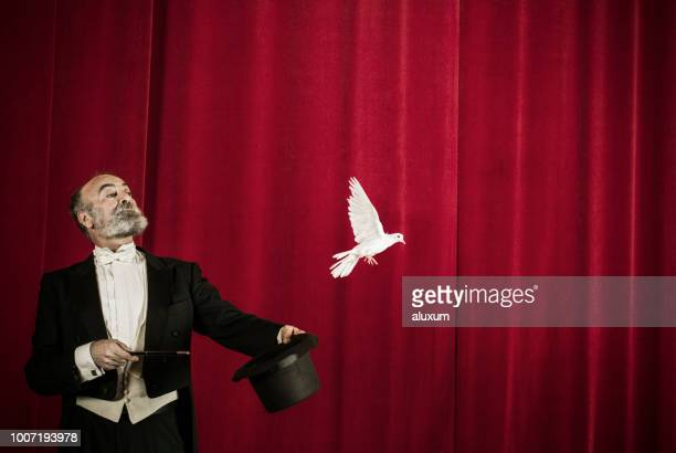 magician trick with doves - tail coat stock pictures, royalty-free photos & images