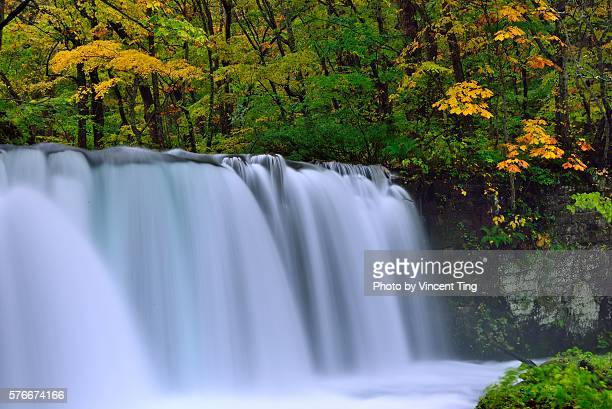 Magnificent fall in Oirase river