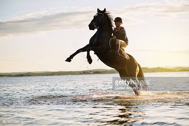 Magnificent moments on horseback