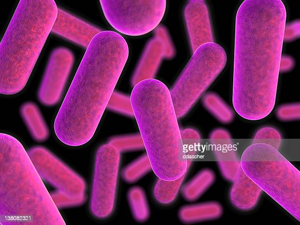 Magnified view of purple tinted bacteria