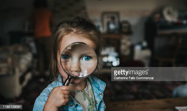 magnifying glass - curiosity stock pictures, royalty-free photos & images