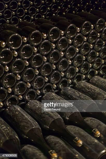 Magnum Champagne Bottles