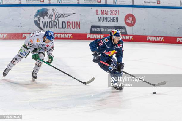 Magnus Eisenmenger of Augsburger Panther and Maximilian Daubner of EHC Red Bull Muenchen battle for the puck during the DEL match between EHC Red...