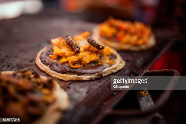 maguey worm or caterpillar being prepared in a sope - mole animal stock photos and pictures