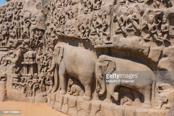 mahabalipuram - arjuna's penance, bas-relief carving, mamallapuram, tamil nadu, india - tamil nadu stock pictures, royalty-free photos & images