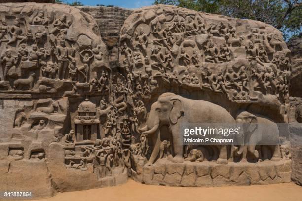 mahabalipuram - arjuna's penance, bas-relief carving, mamallapuram, tamil nadu, india - india stock pictures, royalty-free photos & images