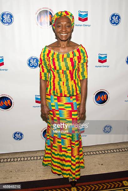 Mahen Bonetti attends The 30th Annual AfricaAmerica Institute Awards Gala at Gotham Hall on September 22 2014 in New York City