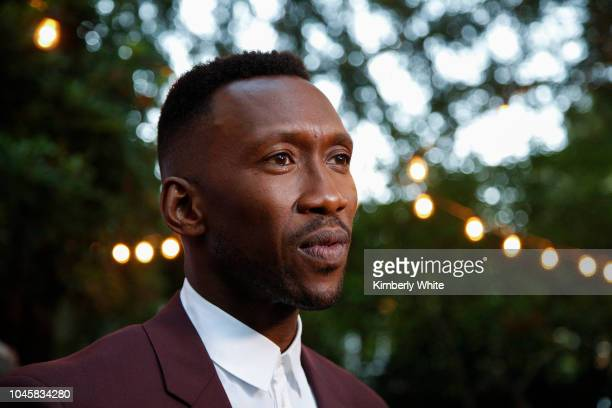 Mahershala Ali attends the 41st Mill Valley Film Festival Opening Night Gala Premieres Of Green Book And A Private War at The Outdoor Art Club on...