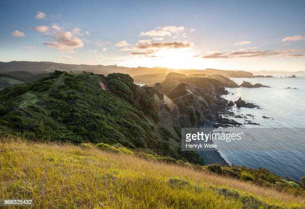 mahinepua peninsula - dramatic landscape stock pictures, royalty-free photos & images