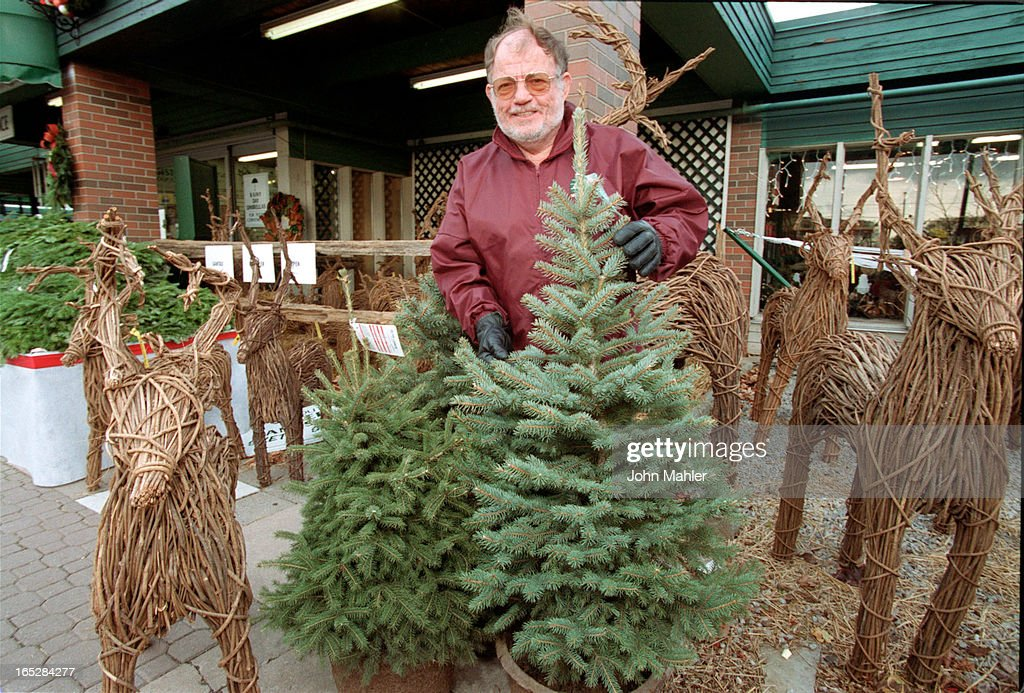 Chief Horticulturist Larry Sherk of Sheridan Nurseries amid some trees they  sell as live Christmas trees - MAHLER-11/21/2000-Chief Horticulturist Larry Sherk Of Sheridan