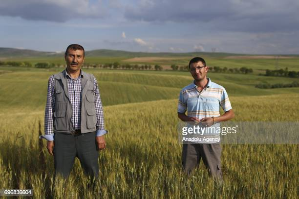 Mahmut Turkoglu a farmer poses for a photo with his 30yearold agricultural engineer son Caglar Turkoglu who had chosen the same field of profession...
