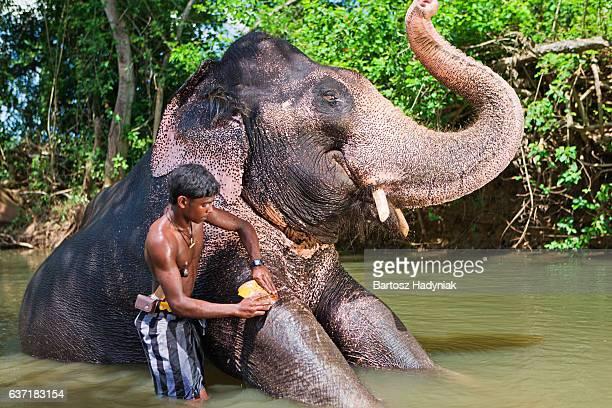 Elefantenführer Baden seinen Elefanten im Fluss