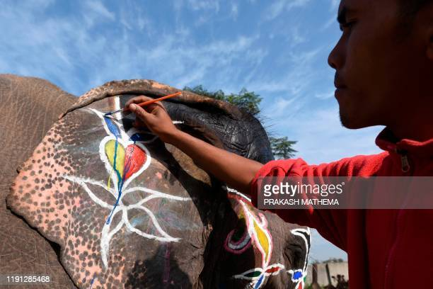 Mahout decorates his elephant before an elephant beauty pageant in Sauraha Chitwan, some 150km southwest of Kathmandu, on January 2, 2020. - The...