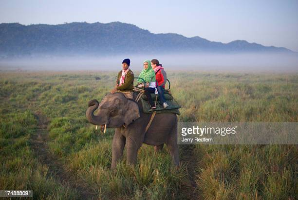 Mahout gets his elephant to salute as he carries tourists through the park as the sun breaks over the horizon. Morning elephant rides to see...